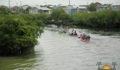 Eco Pro Kayak Race 2012 78 (Photo 49 of 53 photo(s)).