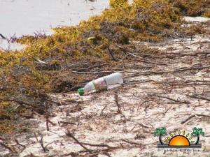 Oceana Beach Cleanup-19