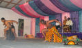 Belize Dance Company Baltazar Fundraiser-35 (Photo 17 of 51 photo(s)).