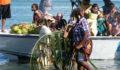 Garifuna Settlement Day (12) (Photo 12 of 25 photo(s)).