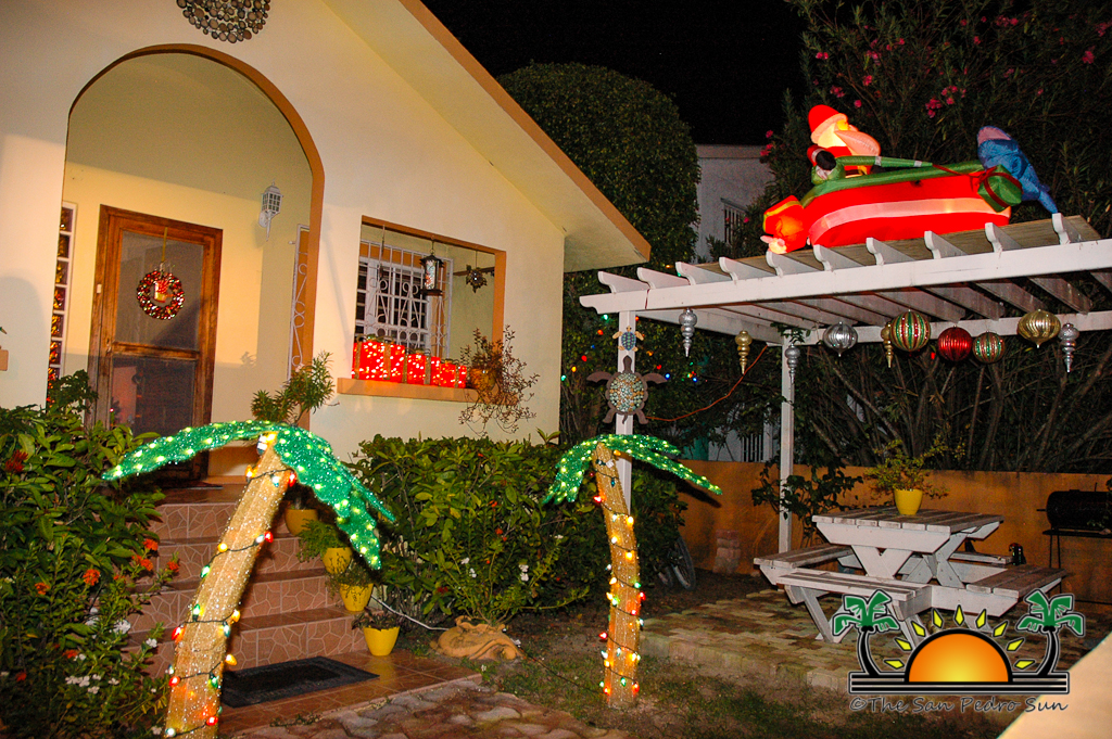 Caribbean Christmas Colors-25
