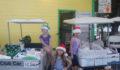 Santa's Lilttle Helpers (5) (Photo 10 of 15 photo(s)).