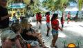 Isla Bonita All Stars Band-5 (Photo 5 of 10 photo(s)).