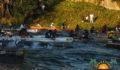 2013 La Ruta Maya Challenge-9 (Photo 22 of 29 photo(s)).