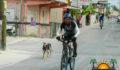 Baron Bliss Bike Race-3 (Photo 2 of 17 photo(s)).