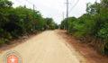 North Ambergris Caye Street-2 (Photo 5 of 6 photo(s)).