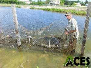 ACES-Tortured-Croc-3