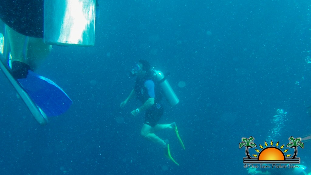 PADI Writes Dive Stakeholders-4