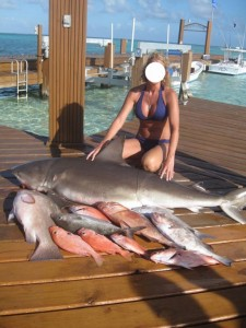 Bullshark-Killed-Strikeforce-Belize-3