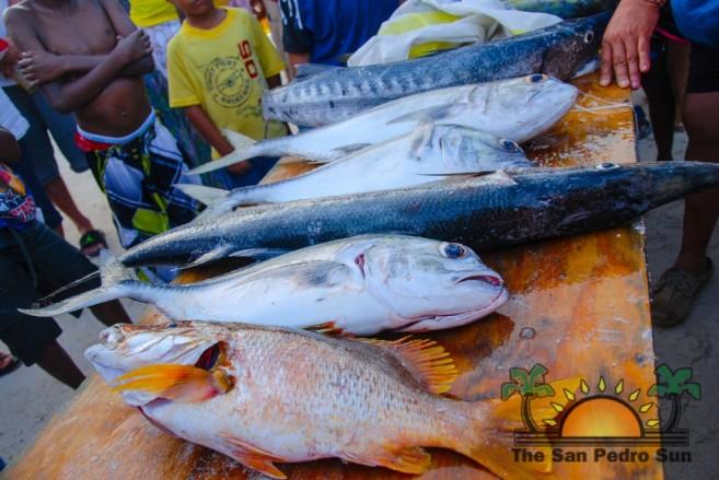 Dia de San Pedro Fishing Tournament-17