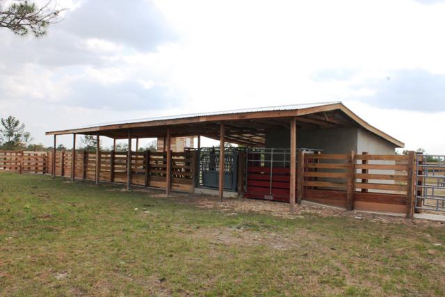 Communal Livestock Holding-1
