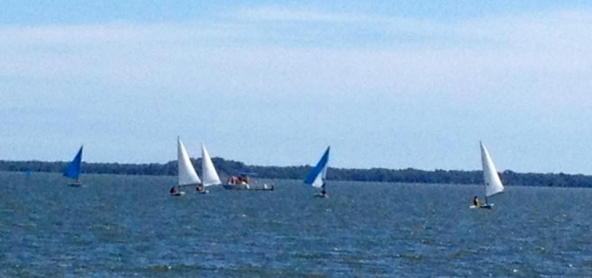 Corozal Sailing Regatta-1
