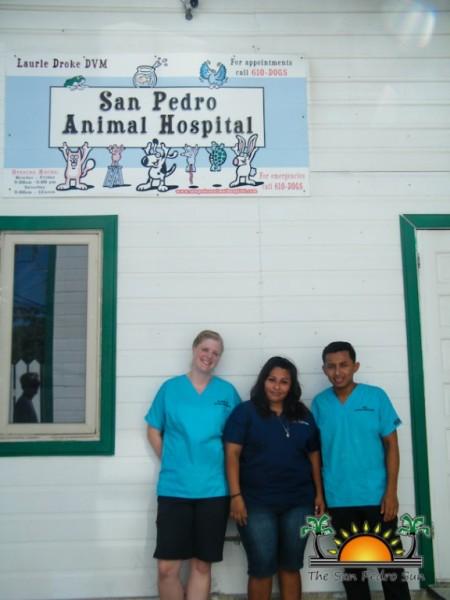 San Pedro Animal Hospital-2