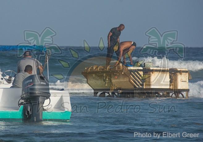10 Unidentified Floating Object Reef Portofino-1
