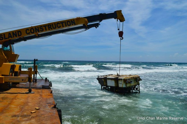 Submersible Removed Barrier Reef Hol Chan-1
