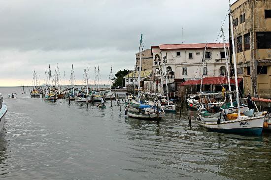 19 Fishing Boats