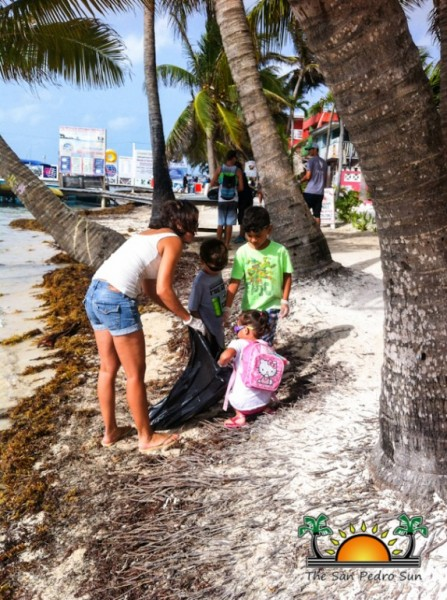 Beach Cleanup The Phoenix-1