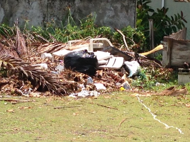 25 Vacant Lots being used as garbage dumps (2)