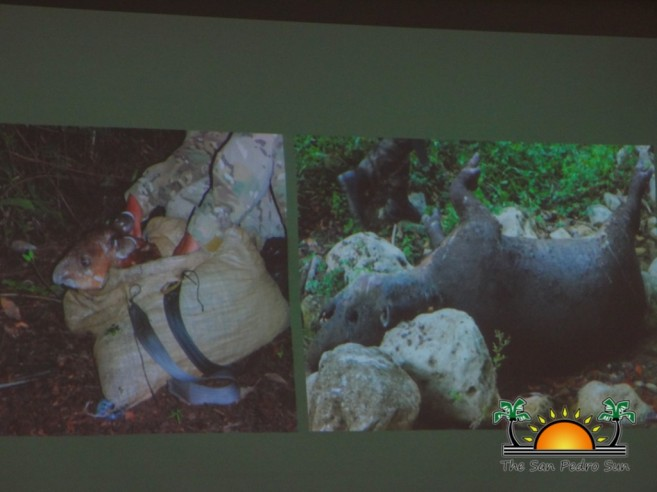 Illegal Wildlife Trade Conservation Seminar-6