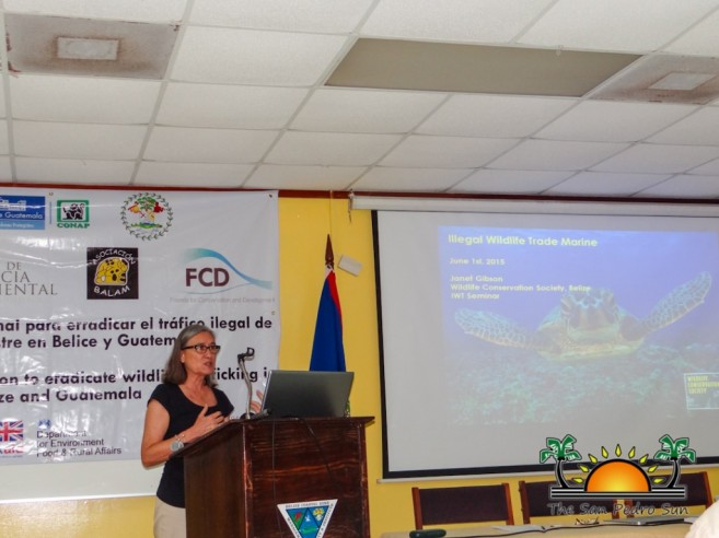 Illegal Wildlife Trade Conservation Seminar-9