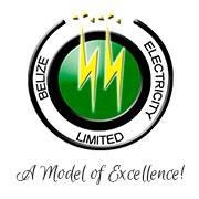 29 BEL Logo
