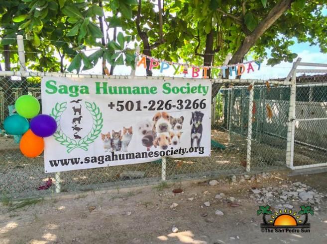 Saga Adoption Day Spectacular