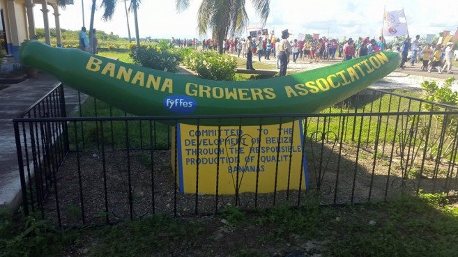 Banana Growers Protest