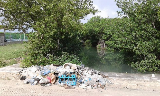 Garbage collected from the lagoon area in San Juan