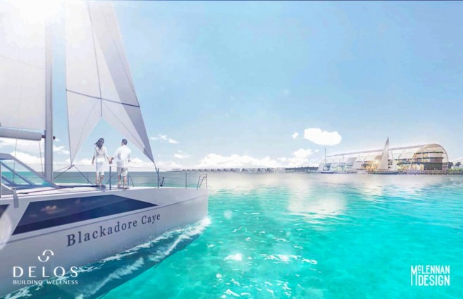 Blackadore Caye Restoration Project DiCaprio EIA Consultation-20