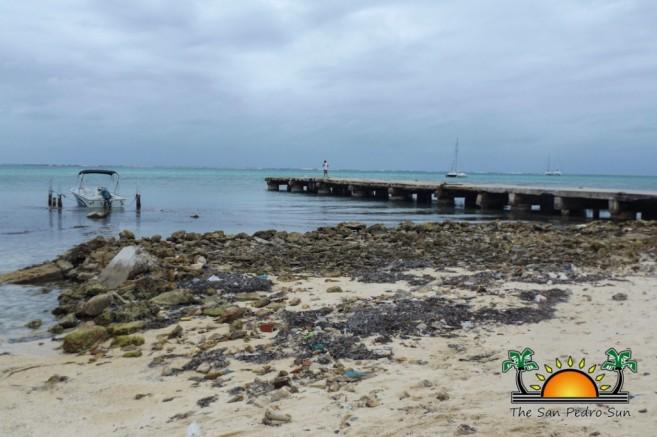 Beach Erosion Reclamation Seawalls-1
