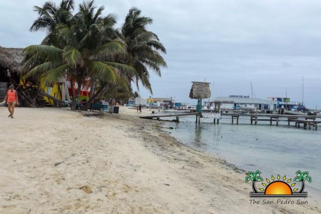 Beach Erosion Reclamation Seawalls-2