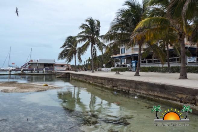 Beach Erosion Reclamation Seawalls-3