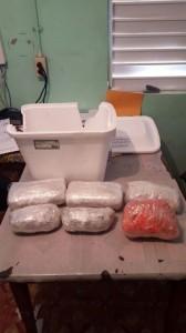 16 Found Drugs in Caye Caulker