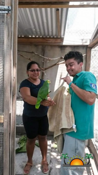 Parrot Inspection Belize Forestry Department Permits-2
