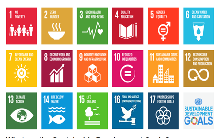 18 Millennium Development Goals