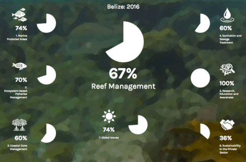 29 Barrier Reef Report Card