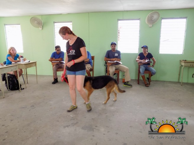 3d Workshop Dealing With Difficult Dogs Training-1