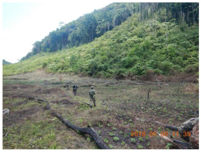 Illegal Guatemalan encroachment continues to threaten the