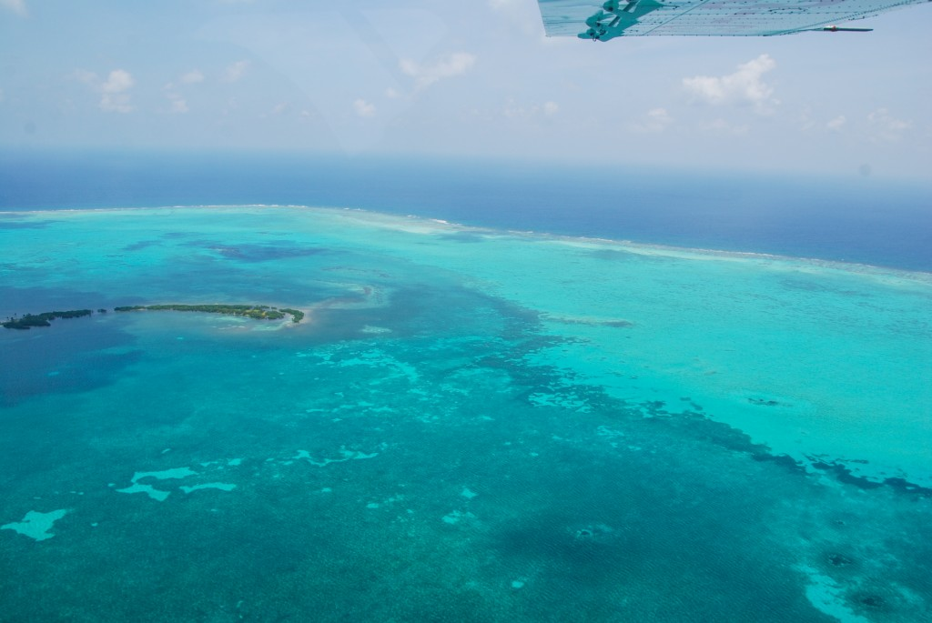 unesco paper belize barrier reef reserve system The belize barrier reef system, which extends roughly 200 miles, was designated a unesco world heritage site in 1996 the system is made up of a series of coral reefs, cays and islands, many of.